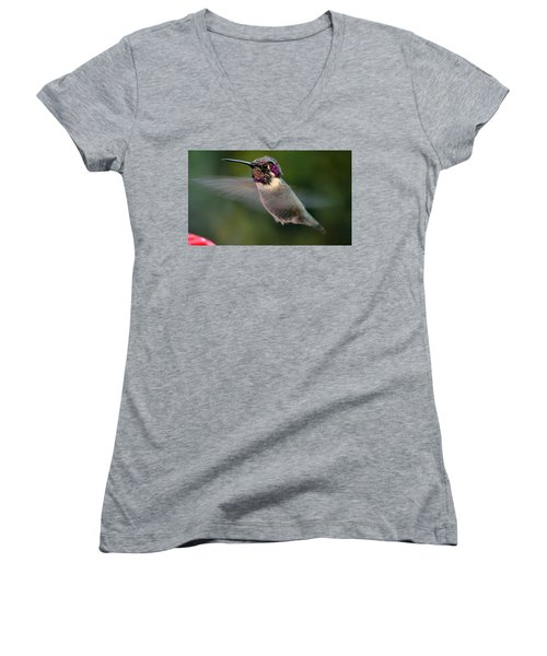 Women's V-Neck T-Shirt (Junior Cut) featuring the photograph Male Anna's In Flight by Jay Milo