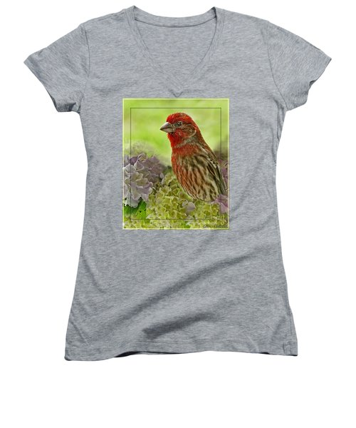 Women's V-Neck T-Shirt (Junior Cut) featuring the photograph Male Finch In Hydrangesa by Debbie Portwood