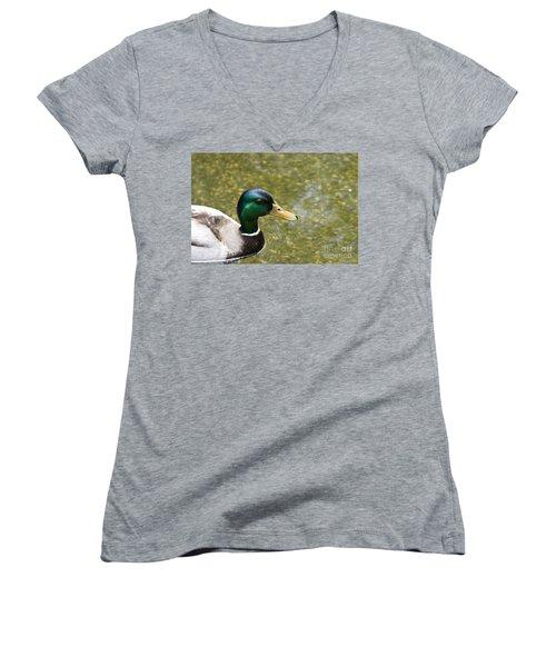 Women's V-Neck T-Shirt (Junior Cut) featuring the photograph Mallard Duck Closeup by David Millenheft