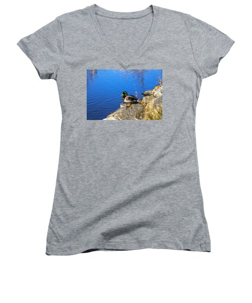 Mallard Looking Over His Domain Women's V-Neck T-Shirt (Junior Cut)