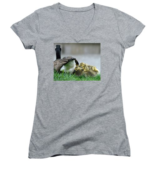 Women's V-Neck T-Shirt (Junior Cut) featuring the photograph Mama And Goslings by Lisa Phillips