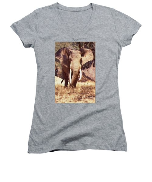 Mana Pools Elephant Women's V-Neck