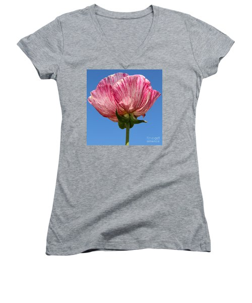 Marbled Mable Ranunculus Flower By Diana Sainz Women's V-Neck