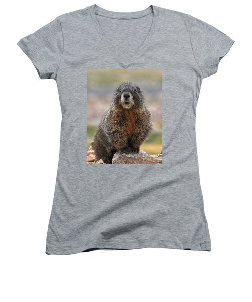 Women's V-Neck featuring the photograph Marmot by Mae Wertz