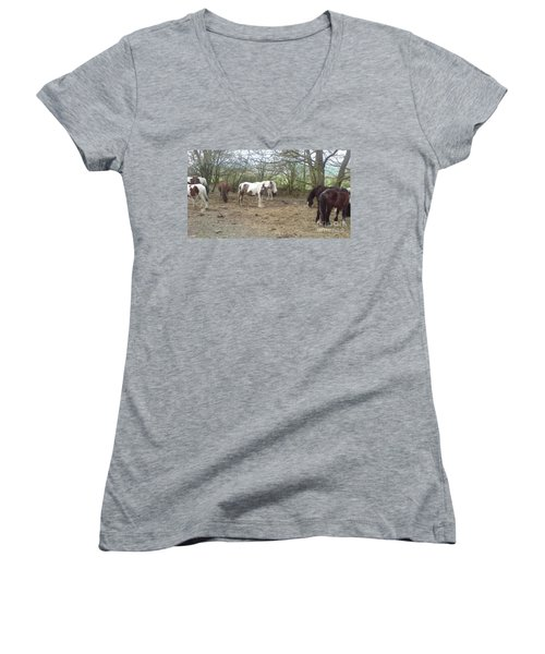 May Hill Ponies 1 Women's V-Neck T-Shirt (Junior Cut) by John Williams