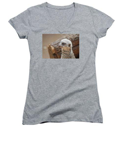 Meerkat Women's V-Neck