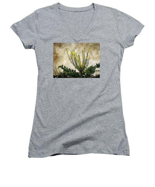 Women's V-Neck T-Shirt (Junior Cut) featuring the photograph Mission Wallflower by Ellen Cotton