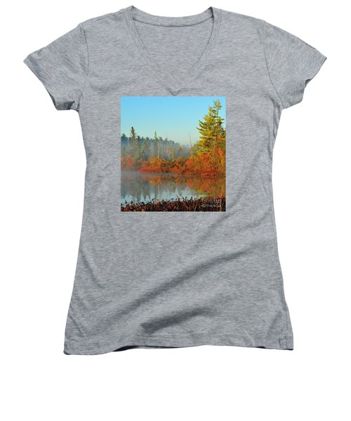 Misty Marsh Women's V-Neck T-Shirt (Junior Cut) by Terri Gostola