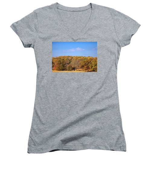 Mixed Fall Women's V-Neck T-Shirt (Junior Cut) by Leeon Pezok