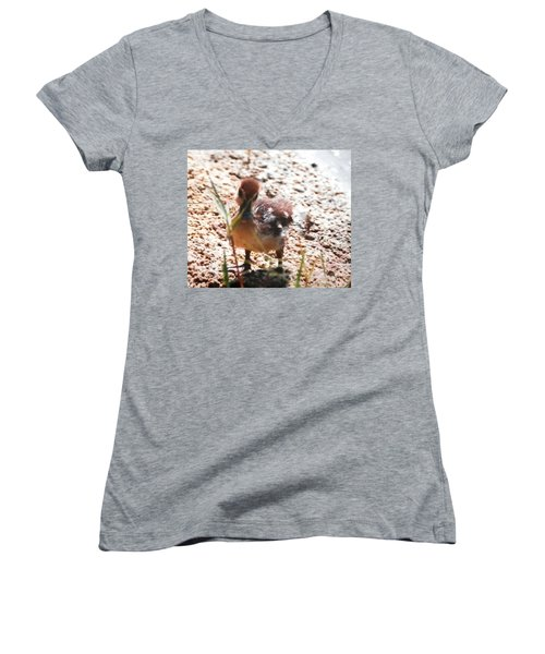 Women's V-Neck T-Shirt (Junior Cut) featuring the photograph Duckling Searching by Belinda Lee