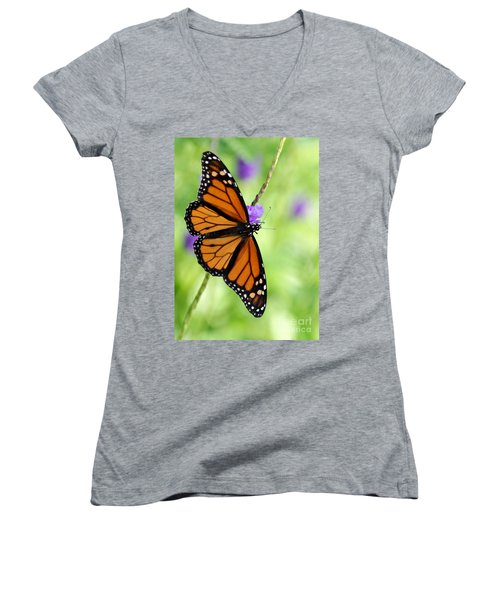 Monarch Butterfly In Spring Women's V-Neck T-Shirt