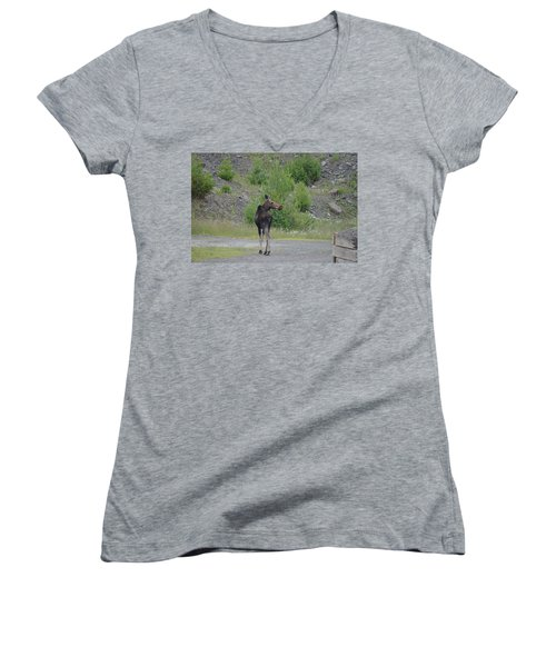 Moose Women's V-Neck T-Shirt