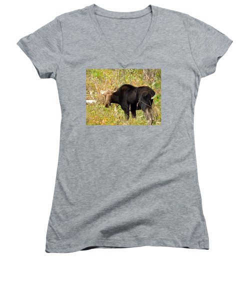 Women's V-Neck T-Shirt (Junior Cut) featuring the photograph Moose by James Peterson
