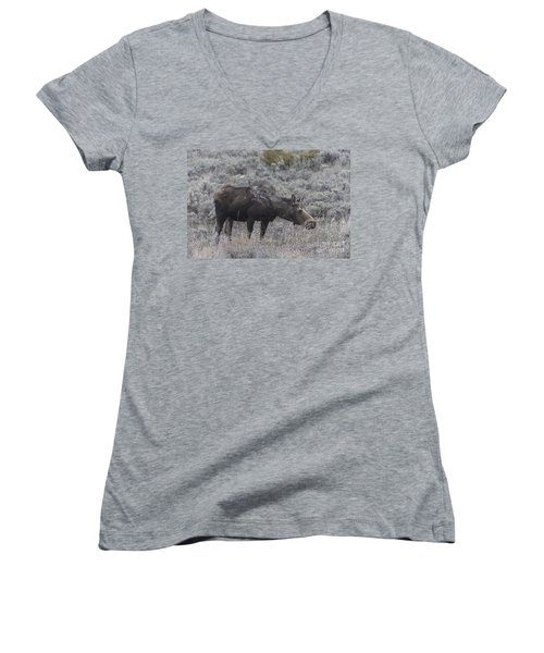 A Grazing Moose Women's V-Neck T-Shirt