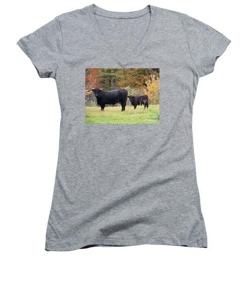 Women's V-Neck T-Shirt (Junior Cut) featuring the photograph Highland Cattle  by Eunice Miller