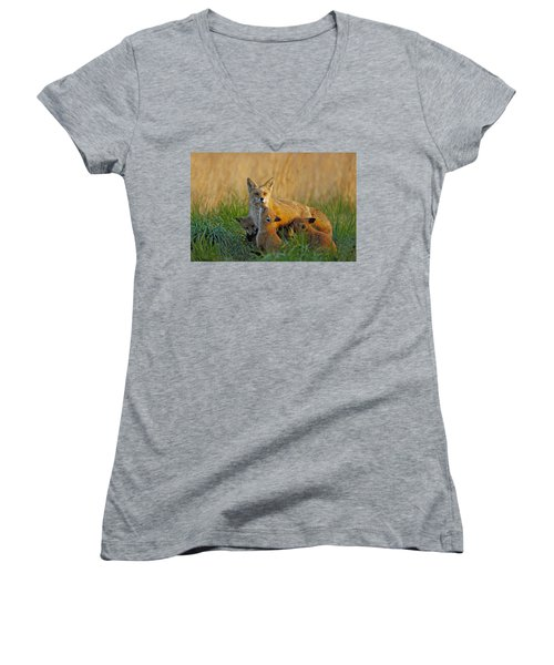 Mother Fox And Kits Women's V-Neck