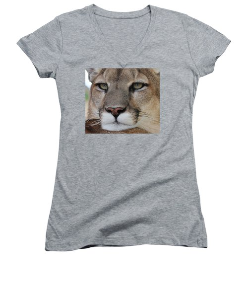 Mountain Lion Portrait 2 Women's V-Neck T-Shirt