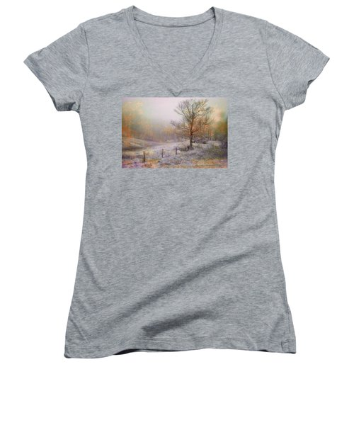 Mountain Mist II Women's V-Neck T-Shirt (Junior Cut) by William Beuther