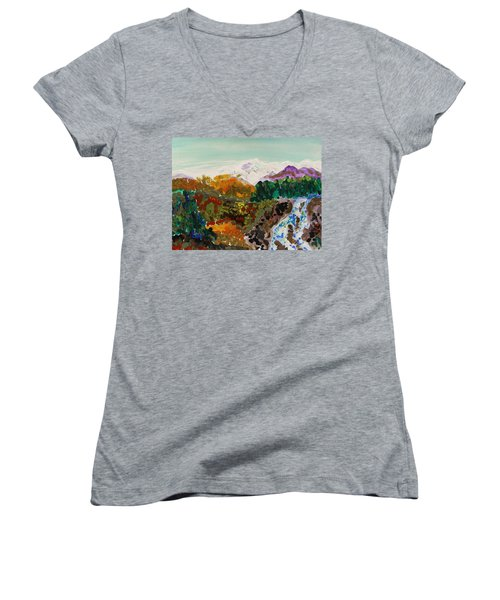 Mountain Water Women's V-Neck T-Shirt (Junior Cut) by Mary Carol Williams
