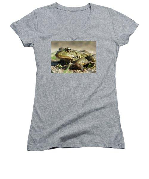 Women's V-Neck T-Shirt featuring the photograph Mr. Charming Eyes. Side View by Ausra Huntington nee Paulauskaite