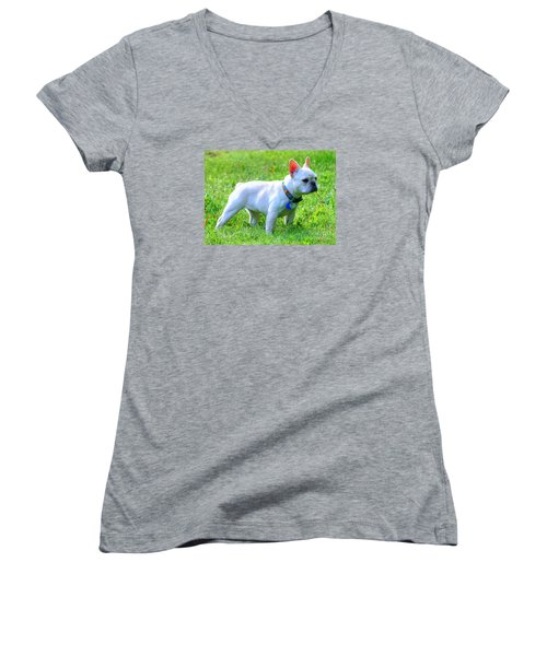 Ms. Quiggly - French Bulldog Women's V-Neck T-Shirt