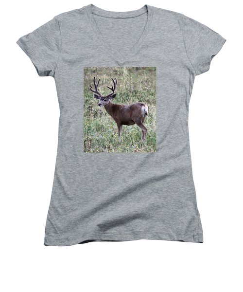 Muley Buck Women's V-Neck (Athletic Fit)