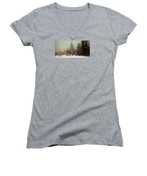 Mystic Woods Women's V-Neck T-Shirt (Junior Cut) by Vittorio Chiampan