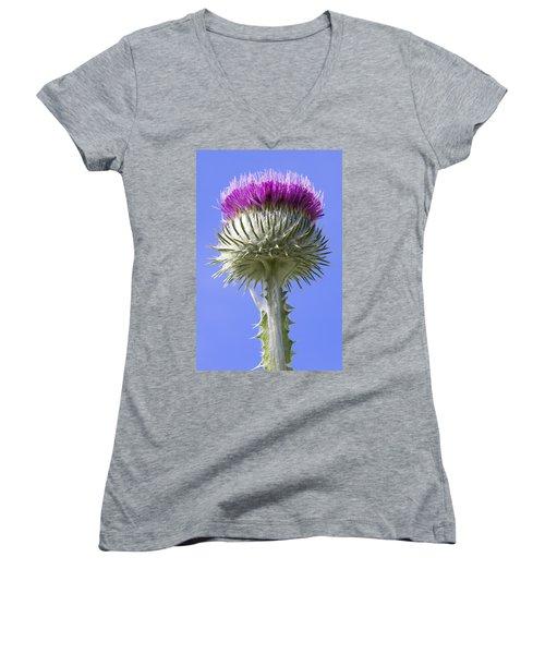 National Flower Of Scotland Women's V-Neck (Athletic Fit)