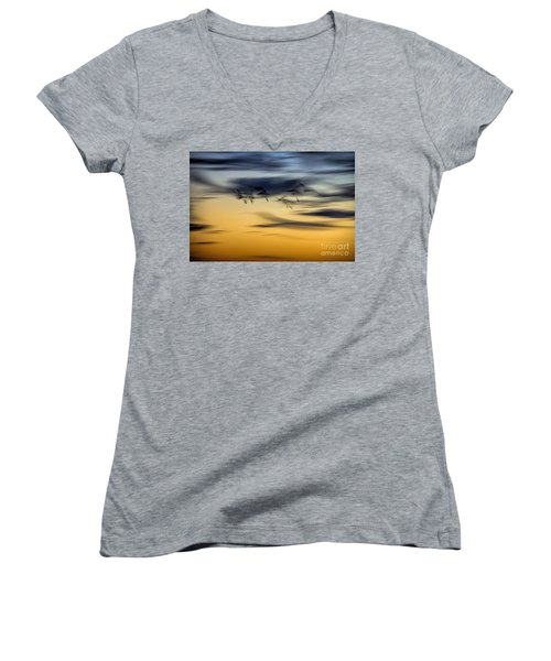 Natural Abstract Art Women's V-Neck T-Shirt