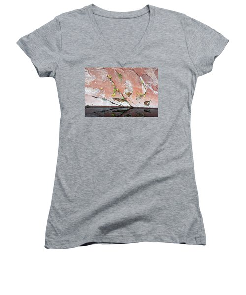 Nature's Abstract Women's V-Neck