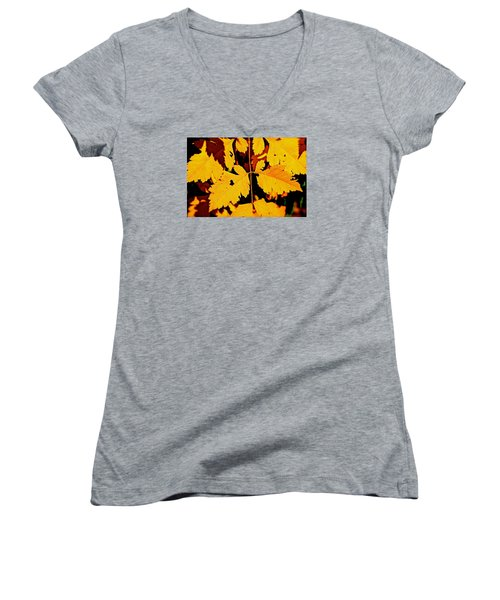 Nature's Designworks Women's V-Neck T-Shirt (Junior Cut) by Ira Shander
