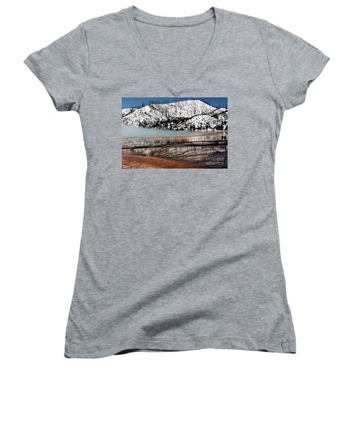 Women's V-Neck T-Shirt (Junior Cut) featuring the photograph Nature's Mosaic I by Sharon Elliott