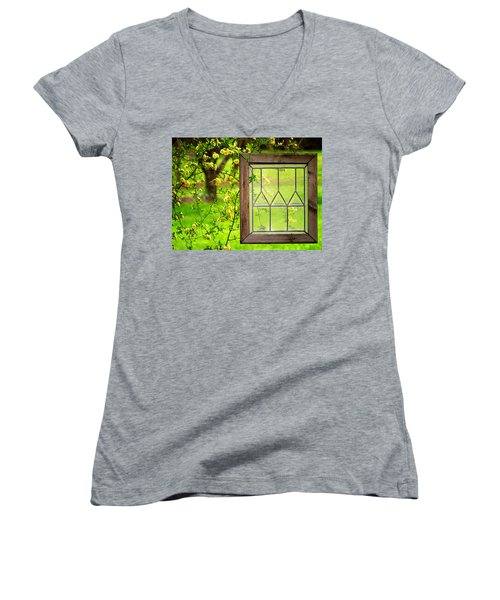 Nature's Window Women's V-Neck T-Shirt (Junior Cut) by Greg Simmons