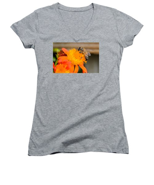 Women's V-Neck T-Shirt (Junior Cut) featuring the photograph Carrying A Load by Debra Martz