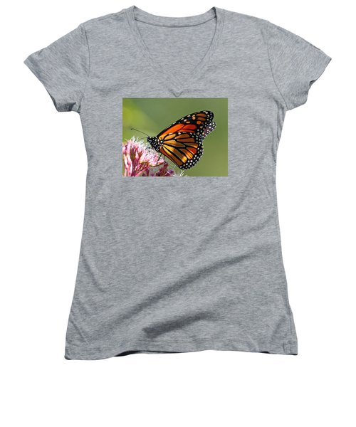 Nectaring Monarch Butterfly Women's V-Neck T-Shirt (Junior Cut) by Debbie Oppermann