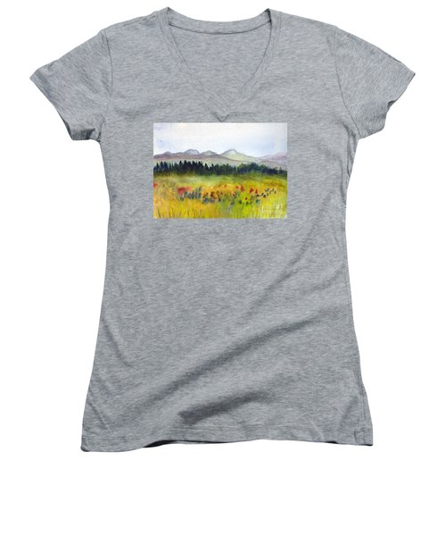 Nek Mountains And Meadows Women's V-Neck T-Shirt (Junior Cut) by Donna Walsh
