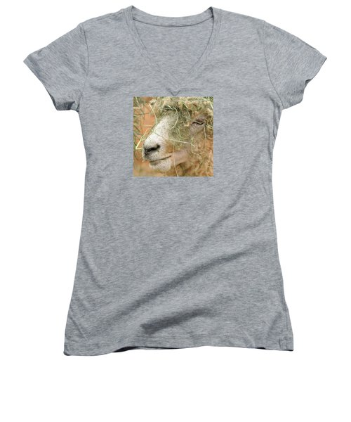 New Hair Style Women's V-Neck T-Shirt (Junior Cut) by Art Block Collections