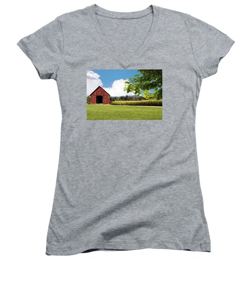 New Hampshire Barnyard Women's V-Neck (Athletic Fit)