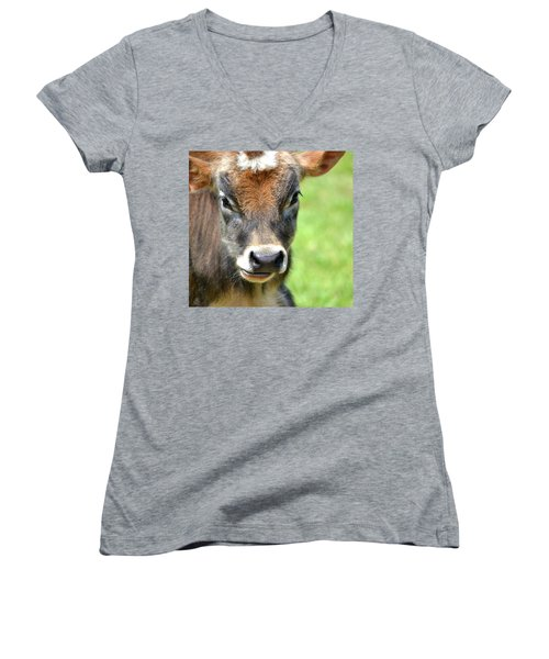 Women's V-Neck T-Shirt (Junior Cut) featuring the photograph No Bull by Deena Stoddard