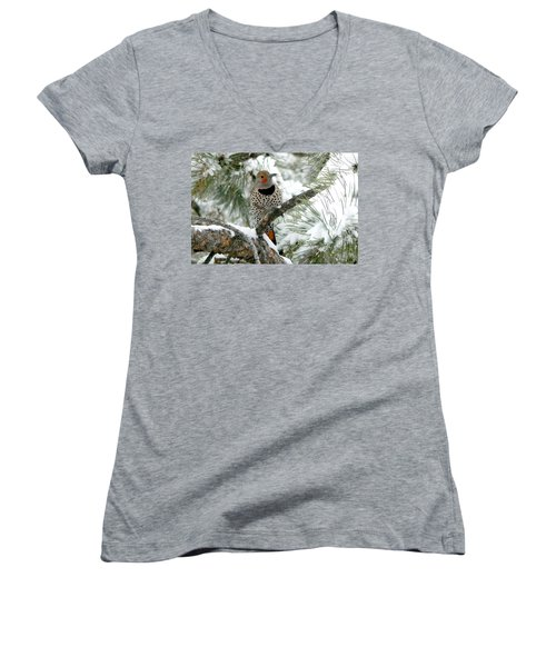 Northern Flicker On Snowy Pine Women's V-Neck (Athletic Fit)