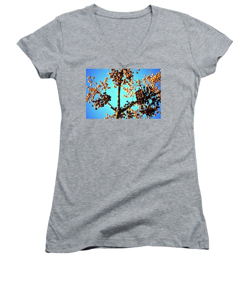 Women's V-Neck T-Shirt (Junior Cut) featuring the photograph Nuts And Berries by Matt Harang