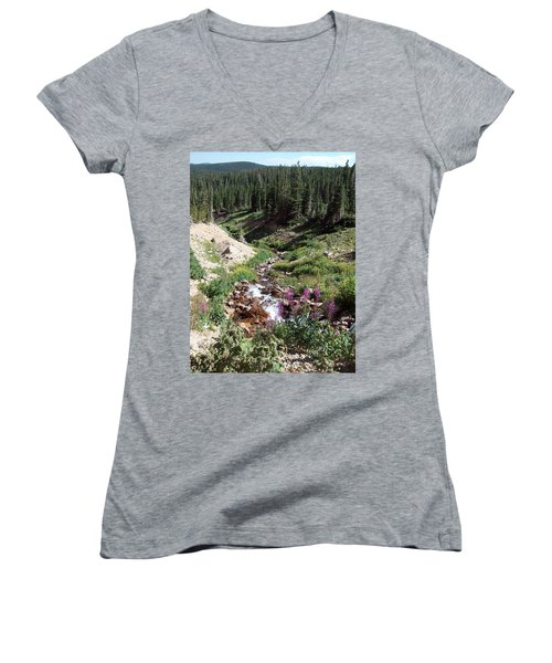 On Top Of The Continental Divide In The Rocky Mountains Women's V-Neck (Athletic Fit)