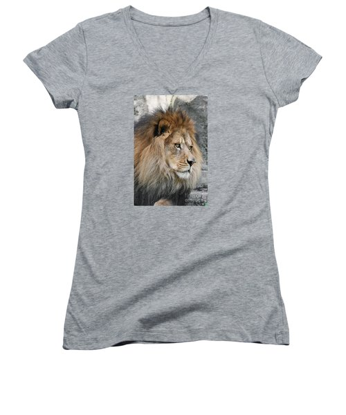 Women's V-Neck T-Shirt (Junior Cut) featuring the photograph Onyo #13 by Judy Whitton