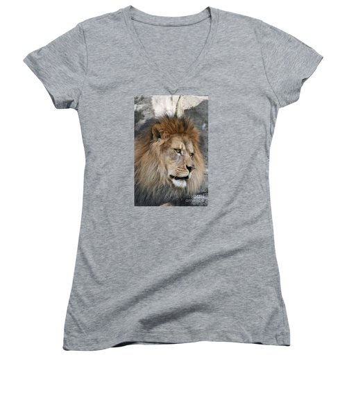 Women's V-Neck T-Shirt (Junior Cut) featuring the photograph Onyo #4 by Judy Whitton