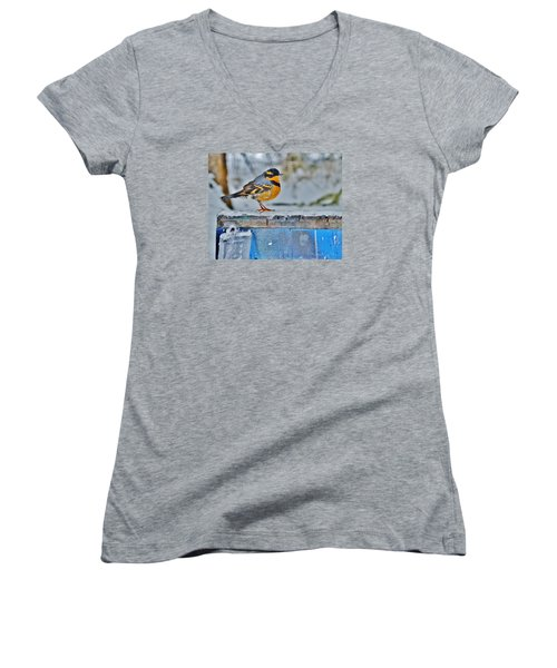 Orange Blue And Sleet Women's V-Neck T-Shirt (Junior Cut) by VLee Watson