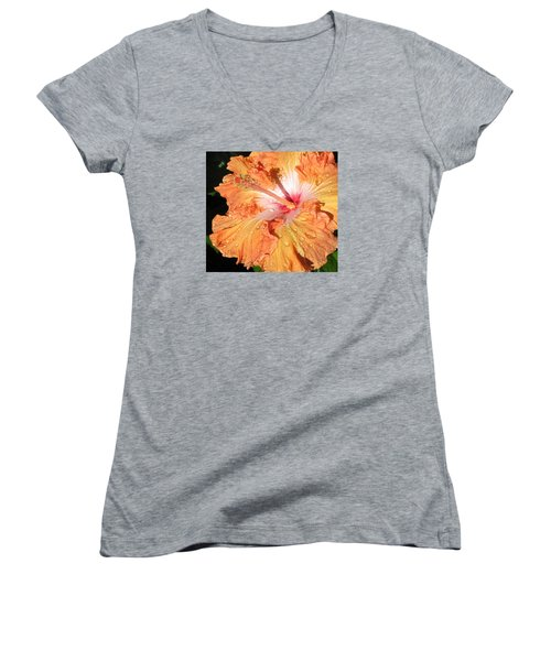 Orange Hibiscus After The Rain Women's V-Neck T-Shirt (Junior Cut) by Connie Fox