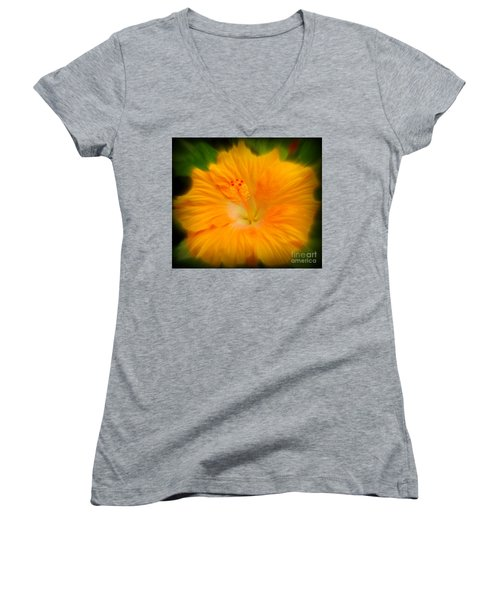 Women's V-Neck T-Shirt (Junior Cut) featuring the photograph Orange Hibiscus Flower by Clare Bevan