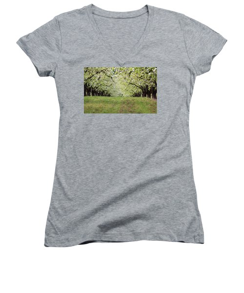 Women's V-Neck T-Shirt (Junior Cut) featuring the photograph Orchard by Patricia Babbitt