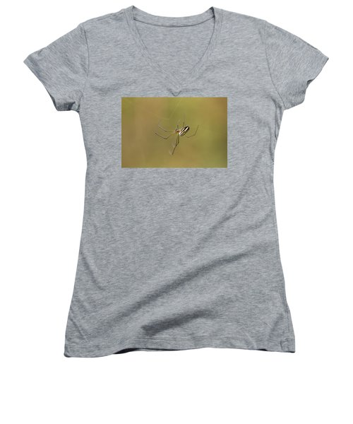 Women's V-Neck T-Shirt (Junior Cut) featuring the photograph Orchard Spider by Greg Allore