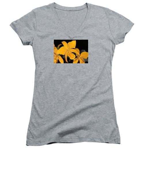 Orchid 5 Women's V-Neck T-Shirt (Junior Cut) by Andy Shomock